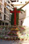 Cruz de Mayo San Hipólito